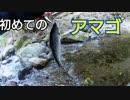 #11 生まれて初めて渓流で釣ったアマゴ 前編【渓流ルアー】