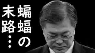 韓国が米国と中国の双方から制裁される事に今頃気が付き、トランプ大統領と習近平に泣き言を垂れ流すが時既にお寿司w