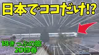 【迷列車の旅】日本で唯一?知る人ぞ知る鉄道風景を探して!【18きっぷ2019春一日目敦賀編】