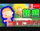 Switch版™どうぶつの森が発売決定!! なら旧作をやろうじゃねぇ~か。 【歓喜】