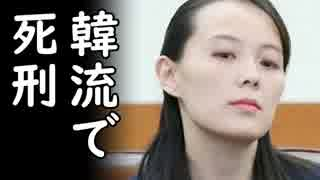 韓国のテレビを見たら死刑に処する北朝鮮に韓国が800万ドル送金完了し世界中の笑いものにw