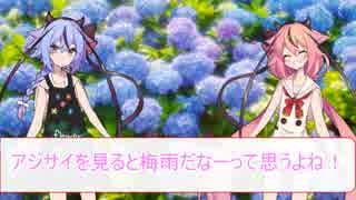 花屋鳴花と紫陽花