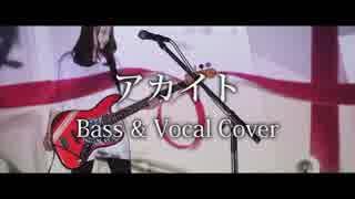 アカイト - みきとP【Bass & Vocal Cover】