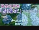 【アコギ弾き語り風】椿屋四重奏「紫陽花」歌ってみた【演奏動画】