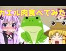 【VOICEROID劇場】ゆかりさんがカエル肉を食べるだけの動画【ゆっくり茶番】