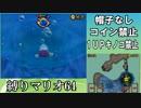 【実況】極寒地に忘れられたスター スーパーマリオ64DS実況プレイ#14