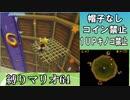 レインボーコイン縛りの本気!!スーパーマリオ64DS実況プレイ#22