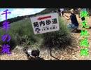【わんこと散歩】千年の苑 ~地元地域旅~