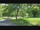 508道民の森一番川オートキャンプ場
