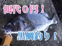 近所の海でクロダイ釣り♪【もっち釣動組合