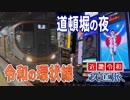 【近畿令和鉄道旅2019 #5】夜の大阪へ@篠山口→難波
