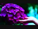【VOCALOID Fukase】紫陽花/なりfeat.VOCALOID Fukase
