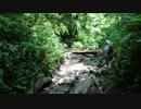 日本百名山に登ってみた番外34 高尾山編
