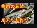 071【釣り】若鮎をルアーで友釣り【アユ】