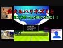 柴犬&ハリネズミとテニスゲームで遊んでみた【ゆっくり?実況】