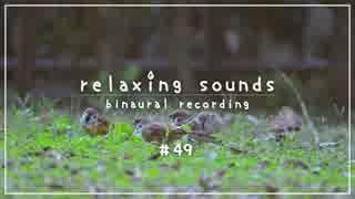 【ASMR #49】竹の耳かき & 春の環境音