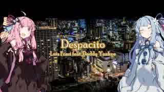 【歌うボイスロイド】「Despacito(Luis Fonsi feat.Daddy Yankee)」【琴葉姉妹】