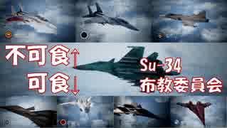 Ace Combat 7 Multiplayer160  バトルロイヤル  Su-34 + HCAA