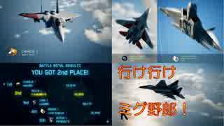 Ace Combat 7 Multiplayer165  バトルロイヤル  MiG-29A + HPAA