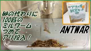 アリの巣観察キットにミルワーム100匹つめてからアリを入れてみた。