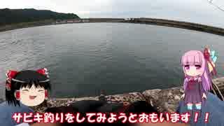琴葉姉妹と行く釣行記録(海釣り編part4)