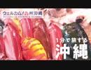 沖縄で、体験!発見!カラフル旅【アナウンサーと旅する『ウェルカム!九州沖縄』】