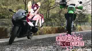 【花見ツーリング(イルローザの森)】きりたんといっしょ!Ninja250 9km