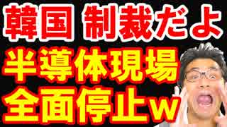 韓国が日本のフッ化水素半導体輸出規制に耳を疑う提案を行い世界中の笑いものに!190以上の対韓制裁措置に韓国政府が泣叫ぶw【KAZUMA Channel】