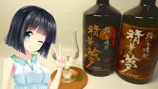 【ボイ酒】京町セイカはほろ酔いたい_03.精華の夢【京町セイカ誕生祭】