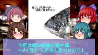 【第11回東方ニコ童祭】【ゆっくり解説】