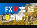 大いなる自由を目指してFXを研究する。9月編[紙1]