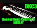 スーパードンキーコング3のいろいろな曲をピアノで弾いてみた
