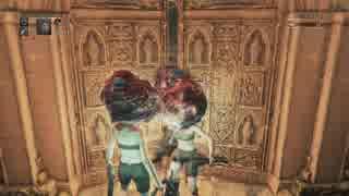 【Bloodborne】(後編)ホモと見るザ・ヤーナム生活 ローランマルチ編.edstafford
