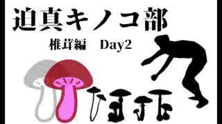 迫真キノコ部・しいたけ栽培の裏技 Day2