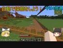 【ゆっくり実況】MODの力でインフラ整備(世界征服)part4 Minecraft