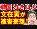第18位:韓国への輸出規制&ホワイト国除外は決して成功しないから日本にブーメランとして返ってくると文在寅大統領が泣き叫ぶ珍事が発生w【KAZUMA Channel】