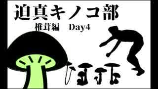 迫真キノコ部・しいたけ栽培の裏技 Day4