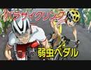 パラサイクリング×弱虫ペダル「アニメ×パラスポーツ『アニ×パラ』あなたのヒーローは誰ですか」