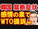 り地域韓国が輸出規制&ホワイト国除外制裁措置の報復で日本の半導体企業ジャパンディスプレイをWTOに提訴、今日も惨めに咽び泣くw【KAZUMA Channel】