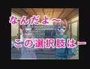【第五弾】女の子を斜めから凝視する旅(DCⅡP.C. 実況プレイ)PART09