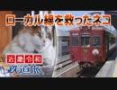 【近畿令和鉄道旅2019 #8】たまの鉄道の課題@和歌山・貴志→鳳