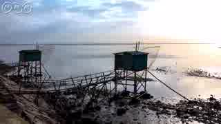有明海・珍動物と干潟の風景 Ariake sea