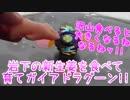 ベイブレードバーストGT~岩下の新生姜を食べて育てガイアドラグーン!!~