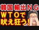 韓国がWTOで支持取り付け大失敗、日本のホワイト国除外と輸出規制で韓国が泣きを入れ始めて疑心暗鬼に陥る喜劇が発生w【KAZUMA Channel】