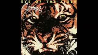 1982年05月28日 洋画 ロッキー3 主題歌 「Eye of the Tiger」(サバイバー)