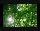 【東方自作アレンジ】森羅【希望の星は青霄に昇る】