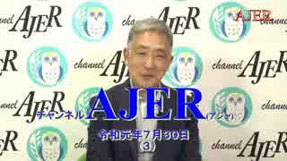 『消費税はきっぱり廃止せよ(前半)』稲村公望 AJER2019.7.30(3)