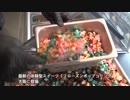 最新の体験型スイーツ「フローズンポップコーン」、大阪に登場