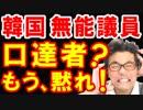 韓国の議員団を日本政府「国民が失望した!」丁寧に追い払う、日韓関係泥沼化と輸出管理強化で韓国さんが惨めに泣き叫ぶw【KAZUMA Channel】
