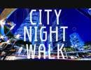 CITY NIGHT WALK ver 佐野 鏡
